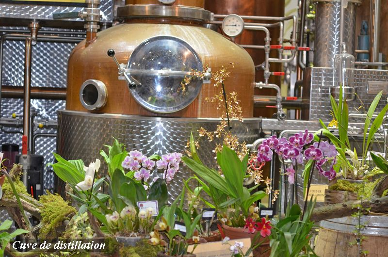 Cuve de distillation